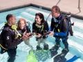 Divemaster internship Study  Beach 7