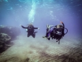 PADI 5 Star Dive Centre Canary Islands