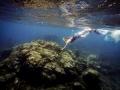 PADI 5 Star Dive Centre Canary Islands