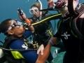 PADI Divemaster internship - internship Divemaster - Divemaster guiding dive