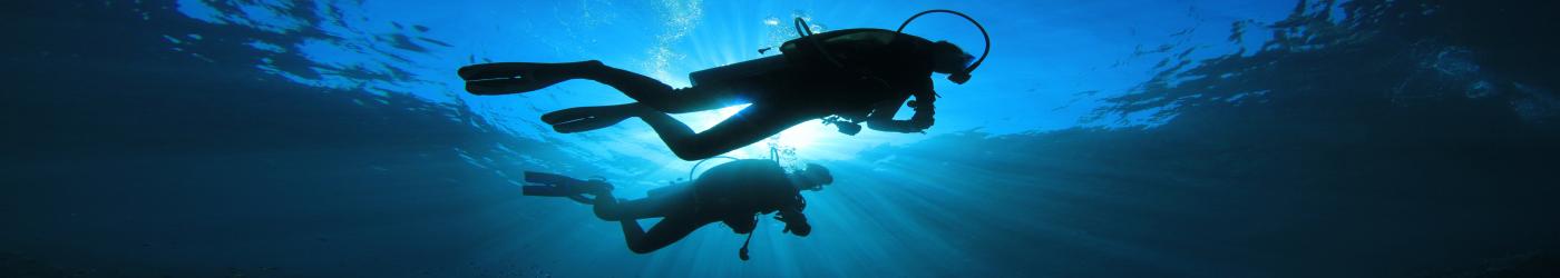 Divemaster internship - PADI Divemaster internship - Divemaster internship Academy - Divers Tenerife, Canary Islands, PADI Divemaster internship