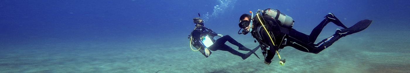 PADI-Divemaster-Internship-Academy-Divers-Fun-Dive