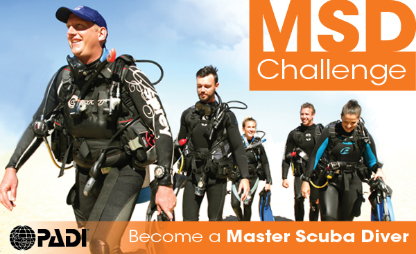 msd-challenge